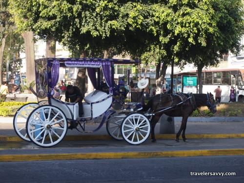 white horse drawn chariot in Guadalajara
