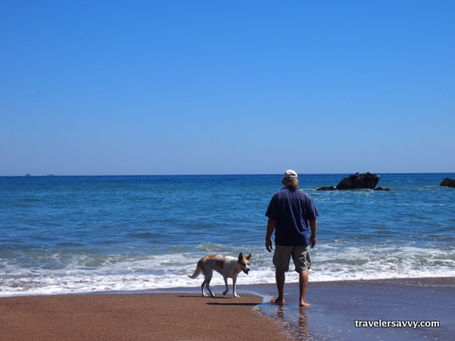 Man and dog on the beach