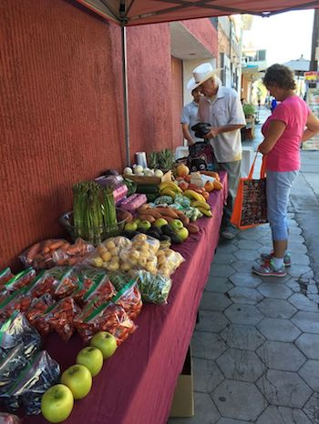 woman shopping at organic market in La Paz, Mexico