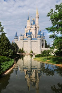 wdw castle