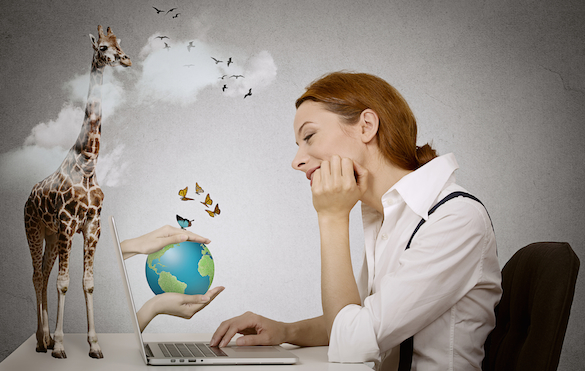 woman at laptop dreaming of vacation