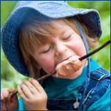 boy in blue eating from a stick