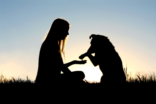 silhouette of woman and dog shaking a paw