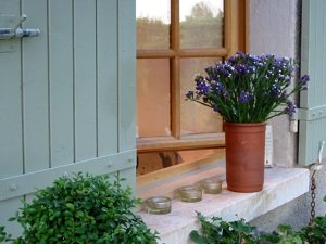 wood window and flowers