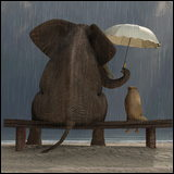 elephant holding umbrella over dog in the rain