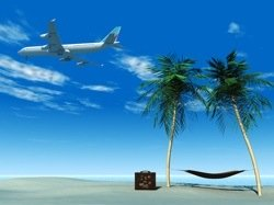 beach, palms, plane